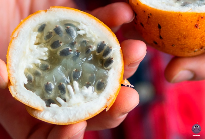 beneficios de la granadilla